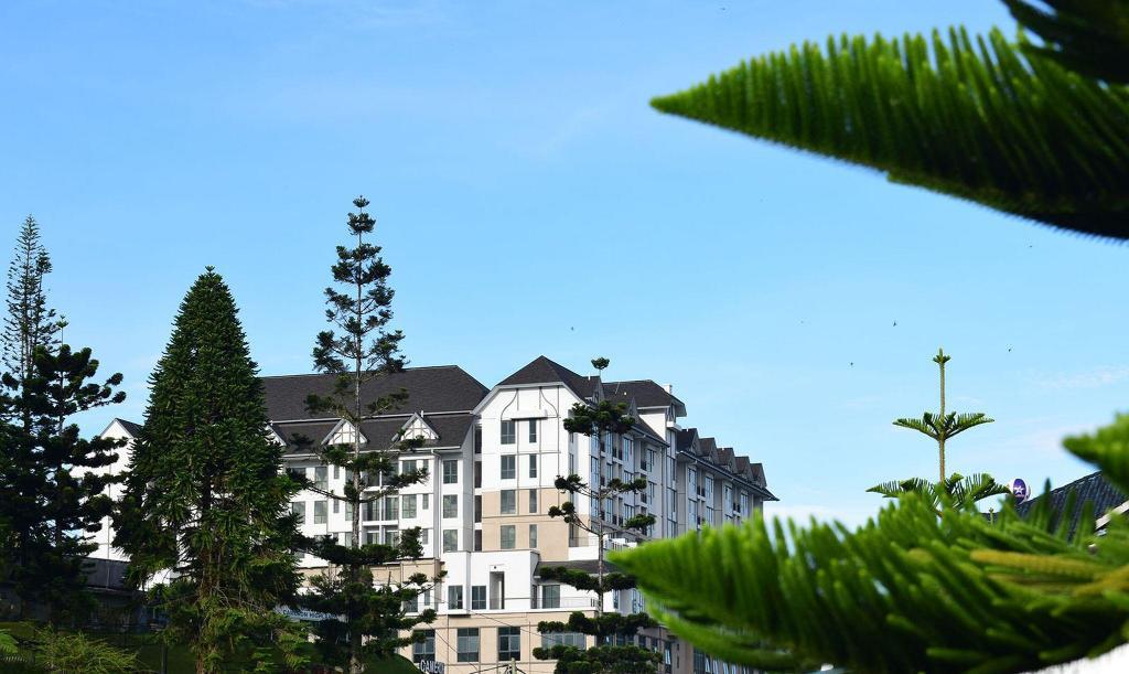 avillion cameron highlands hotel