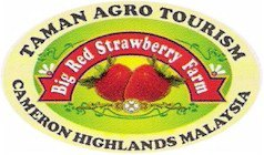 best strawberry park in cameron highlands