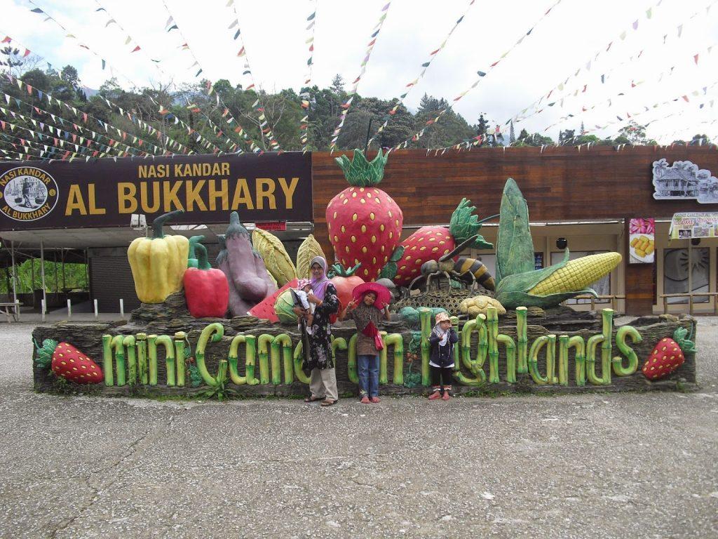 MIni Cameron Highlands Garden Genting Highlands